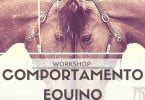 workshop-equinos