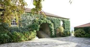 Covela relança vinho da Fundação Eça de Queiroz
