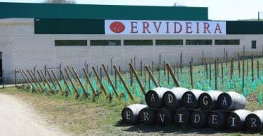 Adega da Ervideira cresceu em 2011 graças à exportação