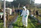 Agim promove curso de aplicação de fitofarmacêuticos