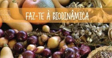 Centro Faz-te à Vida promove oficina de Agricultura Biodinâmica
