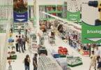 Agriloja vende agora batata de semente nacional certificada
