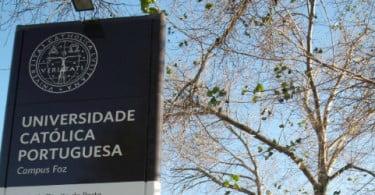 Vinhos nacionais: presente e futuro em análise na Católica Porto