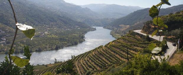 Douro e Porto eleitos Wine Village of the Year