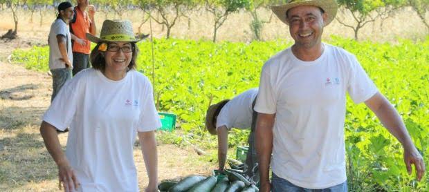 Sapec Agro e Banco Alimentar juntam-se e criam Hortas Solidárias