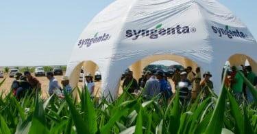 Syngenta apresenta Lumax