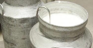Preços do leite em França colocam produtores e distribuição em guerra