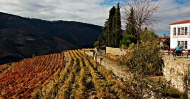The New York Times distingue vinho da Quinta Nova