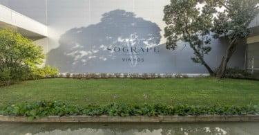 Sogrape Vinhos eleita a quarta melhor produtora mundial