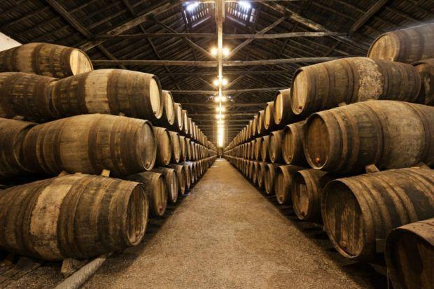 CIN lança tinta para combater fungo da indústria vitivinícola