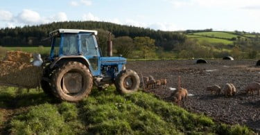 'Moda' da agricultura preocupa profissionais