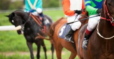 Governo aprova entidade para a organização de corridas de cavalos