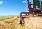 Ministério da Agricultura promove novo seguro de colheitas
