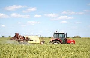 Menos 450.000 hectares de área agrícola