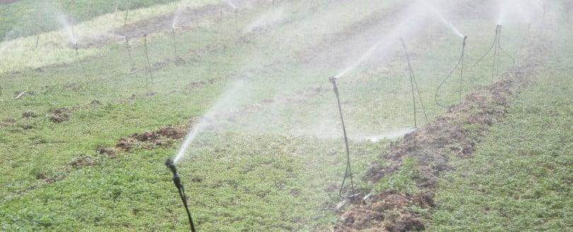 Ministro da Agricultura aprova 14 projetos de reabilitação de regadio no valor de 2 M€