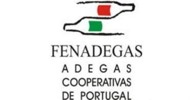 Fenadegas diz que adegas serão penalizadas em milhares de euros com novas medidas fiscais