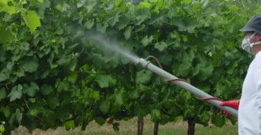 Mercado nacional de agroquímicos cresceu 2
