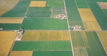 Dívida de 60 milhões a seguradoras agrícolas