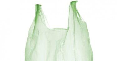 Produção de bioplásticos a partir de beterraba sacarina é mais sustentável