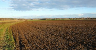 terreno agrícola Vida Rural