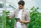 jovem-agricultor