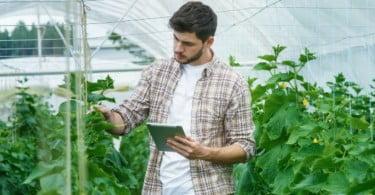 jovem agricultor