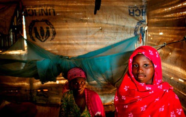 refugiados ACNUR abril  Distribuicao Hoje