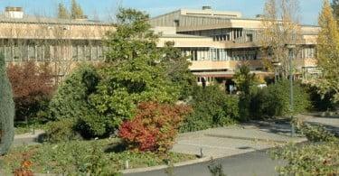 Universidade de Vila Real