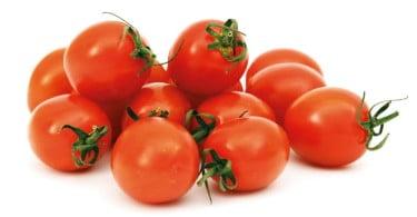 tomate cherry destaque