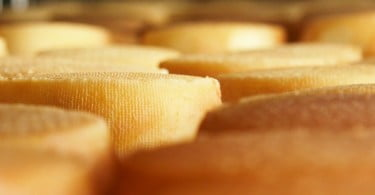 Açores pedem isenções para queijos e lácteos exportados para os EUA