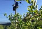 tecnologia agrícola - WiseCrop