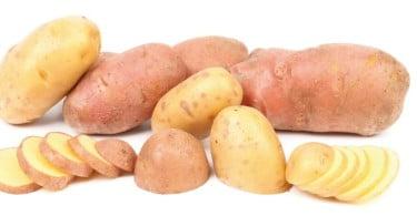 batatas destaque Vida Rural