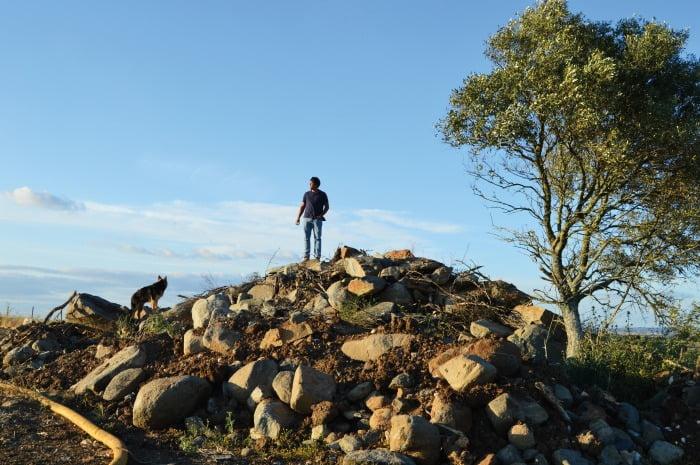 Aspeto da Herdade do Vale Bom antes dos trabalhos de remoção da pedra