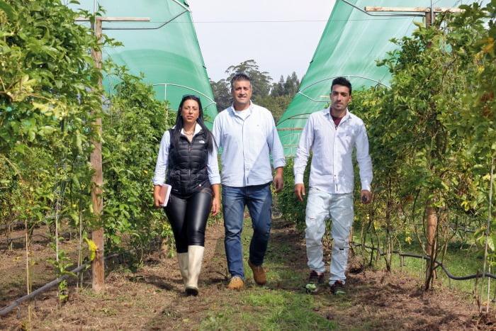 produtores de maracujá roxo - Vida Rural