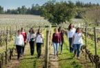 DUva - Portugal Wine Girls - Vida Rural