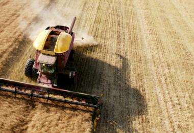 agricultura - colheita - Vida Rural