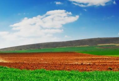 agricultura - financiamento - Vida Rural