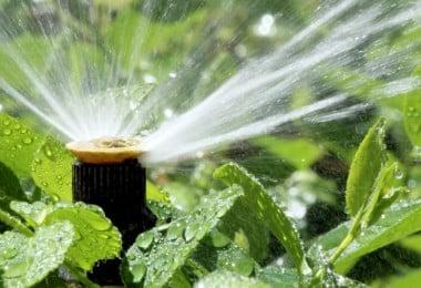 Agricultores vão ter que comunicar a quantidade de água de que necessitam