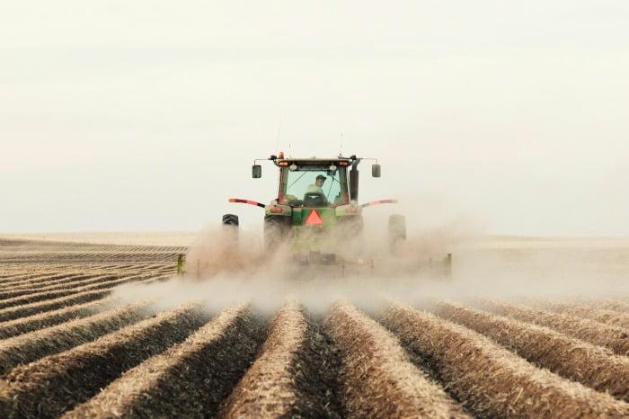 Produção agrícola portuguesa cai 2,5% em 2016