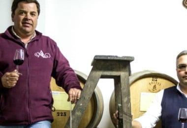 Adega-Cooperativa-da-Vidigueira-produção-Vida-Rural