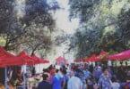 Mercado Quinta das Conchas - Vida Rural