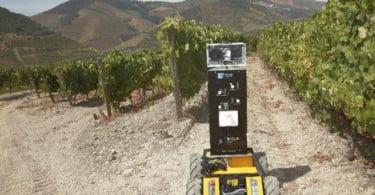 Robot INESC TEC Vida Rural
