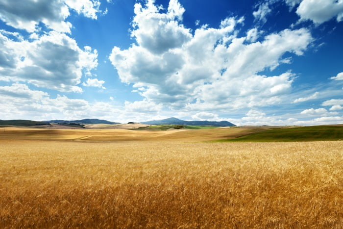 terras agrícolas