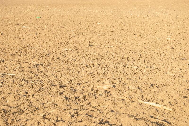 Comissão Europeia lança novas medidas de apoio aos agricultores afetados pela seca