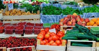 hortofrutícolas