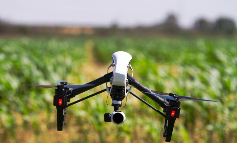 Fundação para a Ciência e Tecnologia vai financiar laboratório de soluções digitais para a agricultura