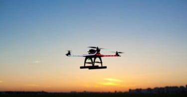 """Imagens de satélites de observação da Terra e drones """"eficazes na deteção de pragas florestais"""""""