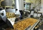 Serpa cria Centro Tecnológico Agroalimentar