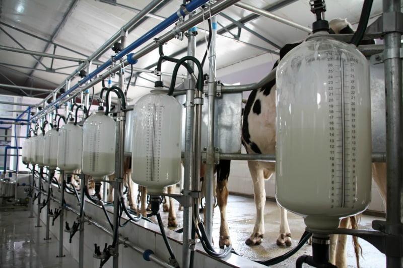 preços do leite na União Europeia