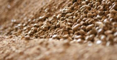 Companhia das Lezírias vai entregar alimentação aos animais de Mação